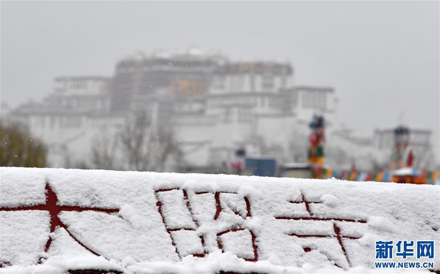 (新华视界)(4)雪后大昭寺金顶