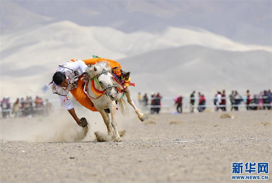 (体育)(10)西藏阿里举行赛马竞技大赛