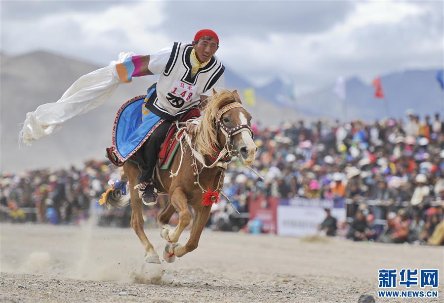 (体育)(5)西藏阿里举行赛马竞技大赛