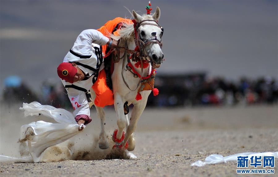 (体育)(3)西藏阿里举行赛马竞技大赛
