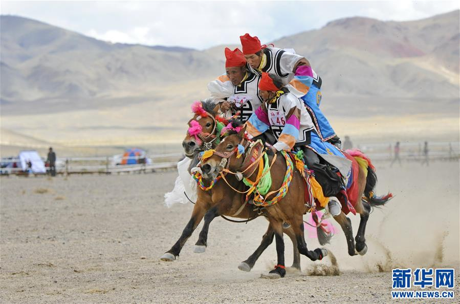 (体育)(23)西藏阿里举行赛马竞技大赛