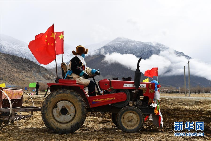 (经济)(7)西藏:春耕第一犁