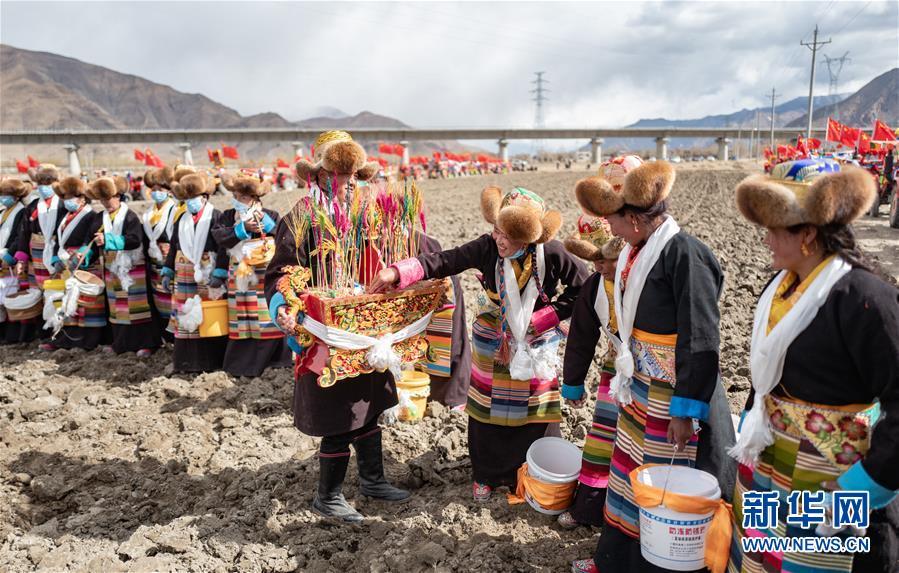 (经济)(3)西藏:春耕第一犁