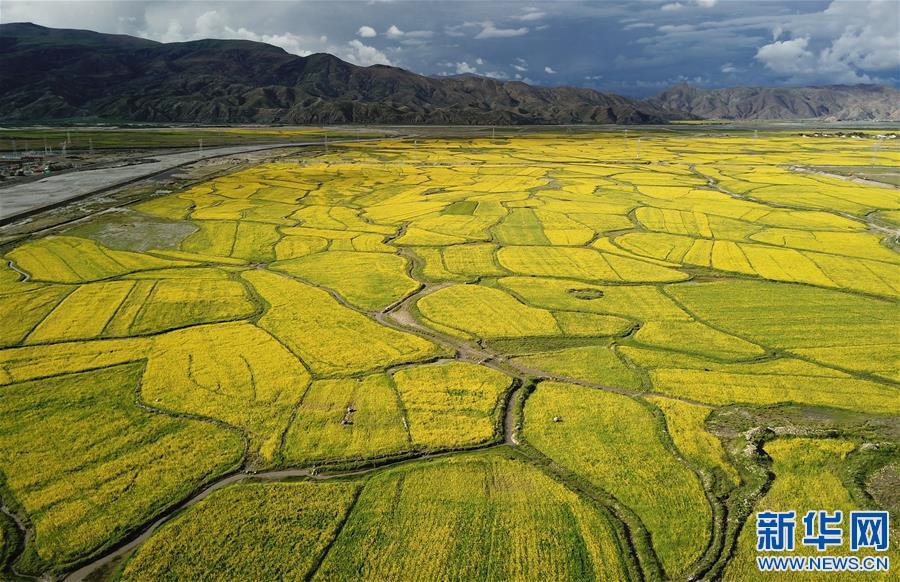 (美丽中国)(3)西藏:无限风光在高原