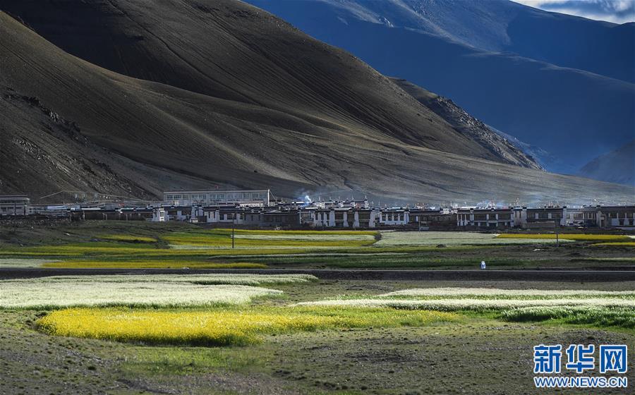 (美丽中国)(8)西藏:无限风光在高原