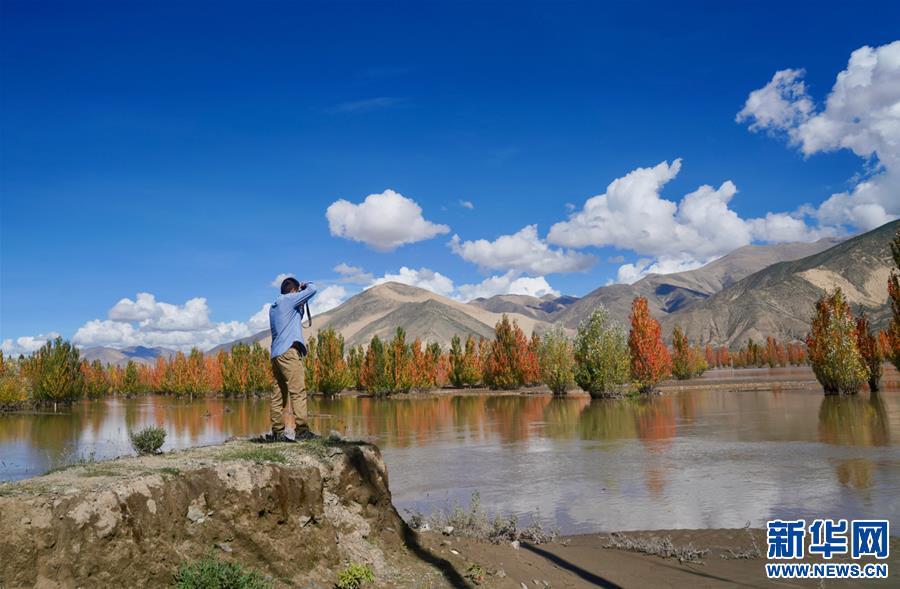 (环境)(4)西藏:雅江秋色美