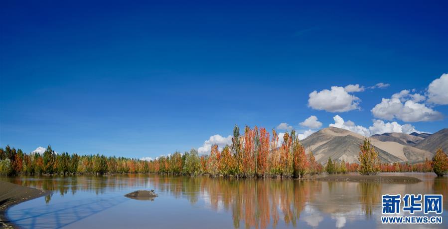 (环境)(6)西藏:雅江秋色美