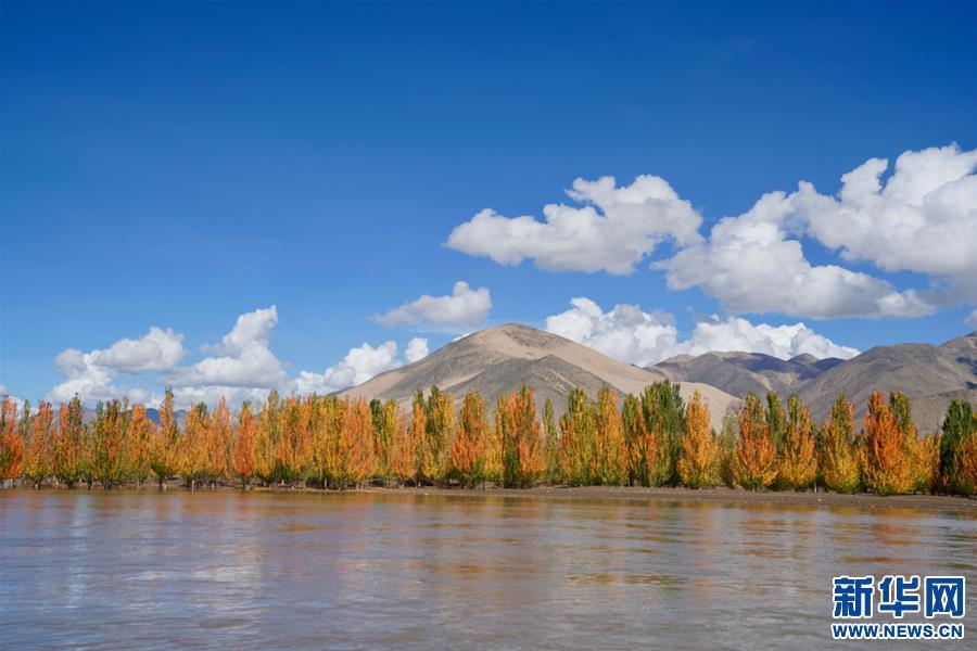 (环境)(7)西藏:雅江秋色美