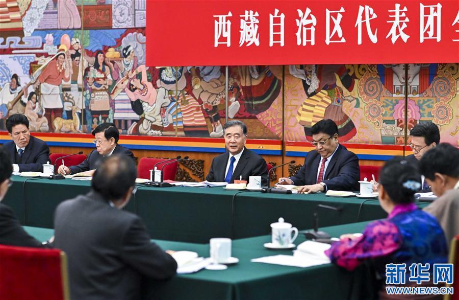(两会)汪洋参加西藏代表团审议