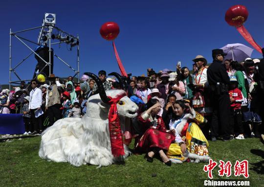 """藏区传统民俗""""嫁接""""现代元素:草原""""诉""""乡愁"""