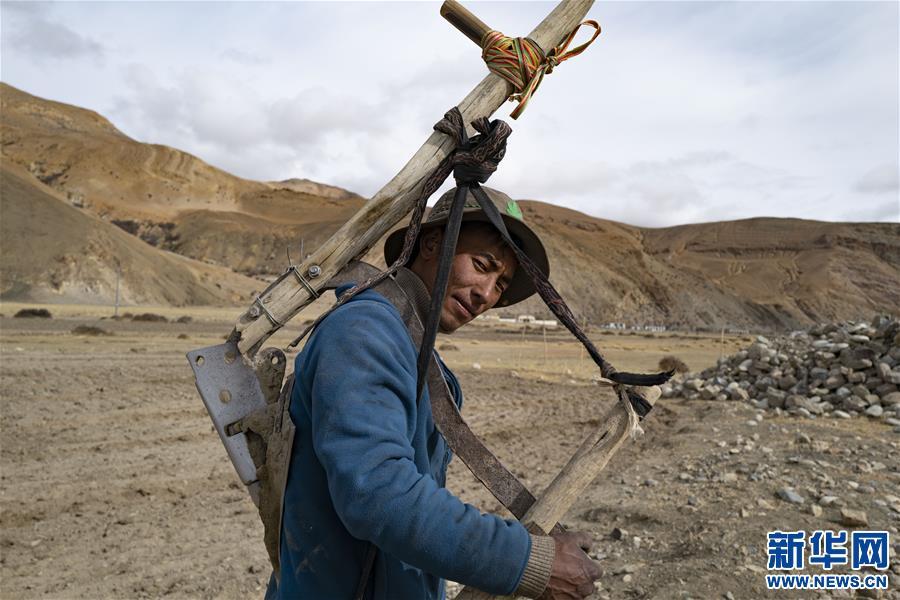 (经济)(6)西藏:珠峰脚下春耕忙