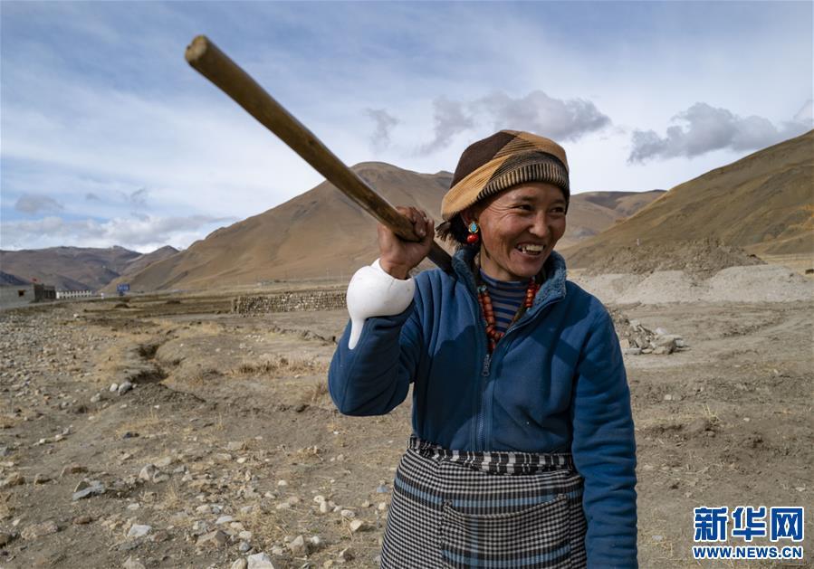 (经济)(5)西藏:珠峰脚下春耕忙