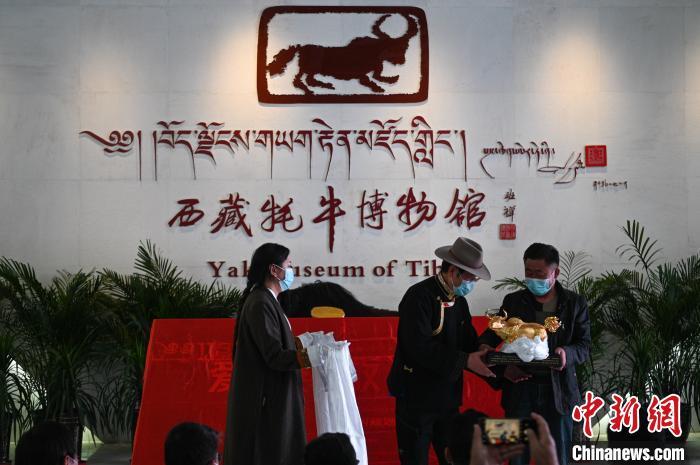 5月17日,各界人士向西藏牦牛博物馆捐赠藏品。 何蓬磊 摄
