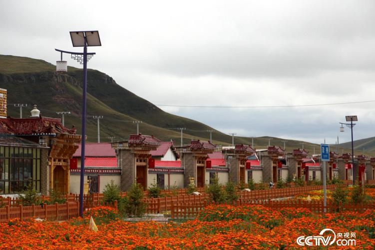 """被誉为""""生态旅游第一藏寨""""的尕秀村(王甲铸/摄)"""