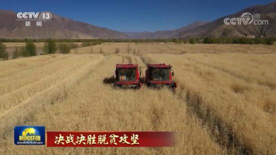 带动西藏农牧民增收致富