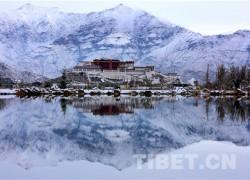 雪域西藏迎来去冬以来最大降雪