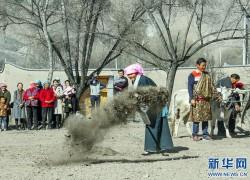 """青海:黄河岸边举行""""开耕""""仪式 开启春耕""""第一犁"""""""