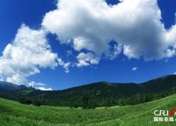 林芝鲁朗:美景如画