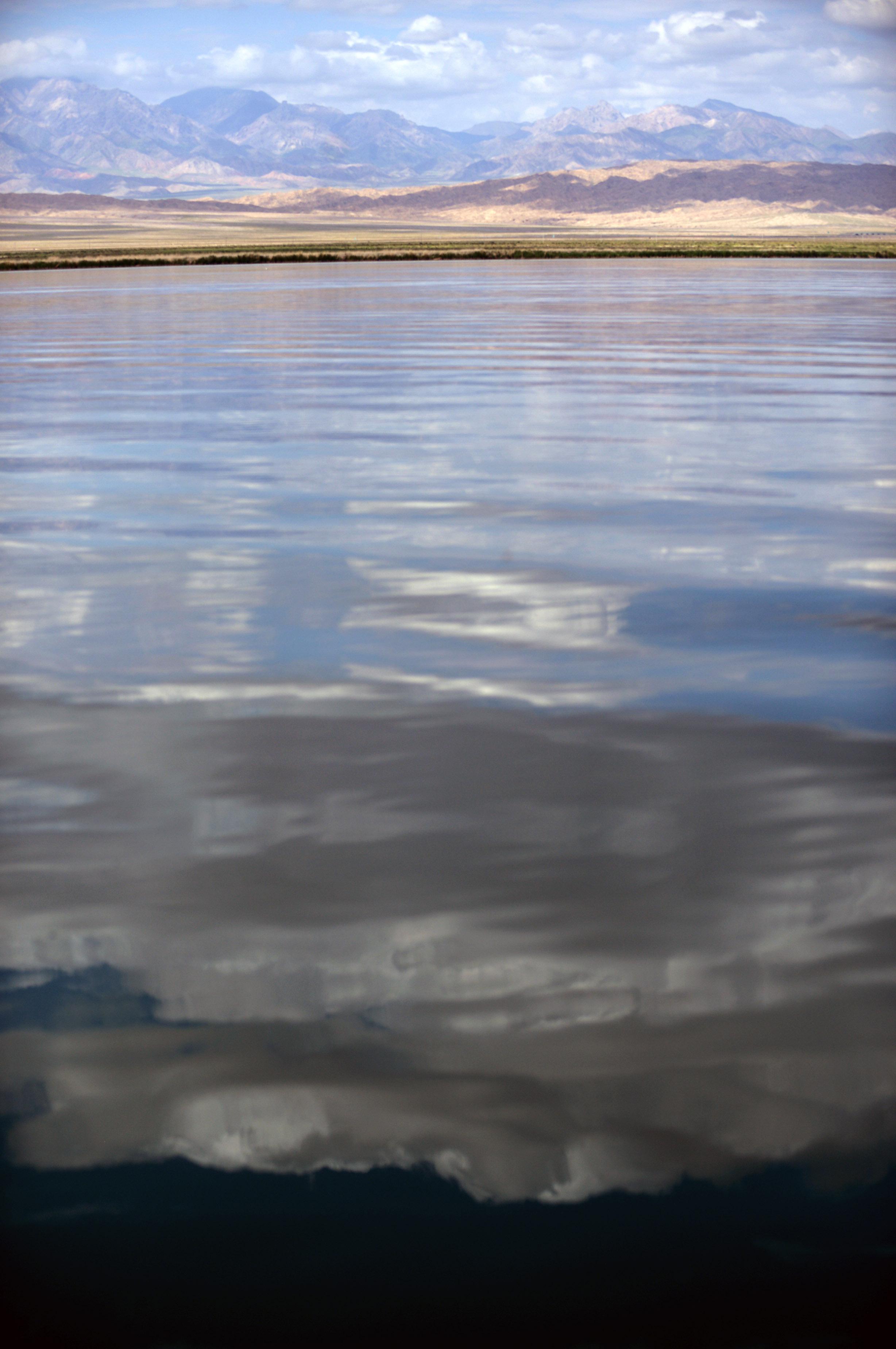 在青海省海西蒙古族藏族自治州的戈壁深处,水草肥美的马兰滩为牧民