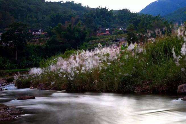 感受浪漫时光  浓浓诗情  青山绿水  阳光下的温暖 悠远的青山,隐逽的人家,幽静的小溪,散漫的流水,银白的芦苇,曲径通幽,若能携心爱的人漫步徜徉其间,也是很醉人的风景。 秋,充满诗情画意的季节。那些最浪漫的事,往往发生在不经意间。 近日,有摄影爱好者发现并用焦距定格了这一景东美景,小编推出,请你欣赏,见者分享。